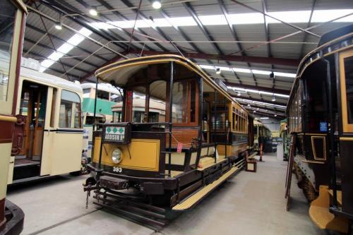 Sydney Tram 393
