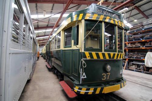 Ballarat Tram 37