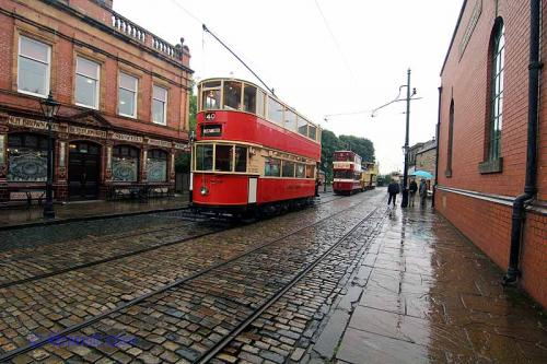 Trams on parade!